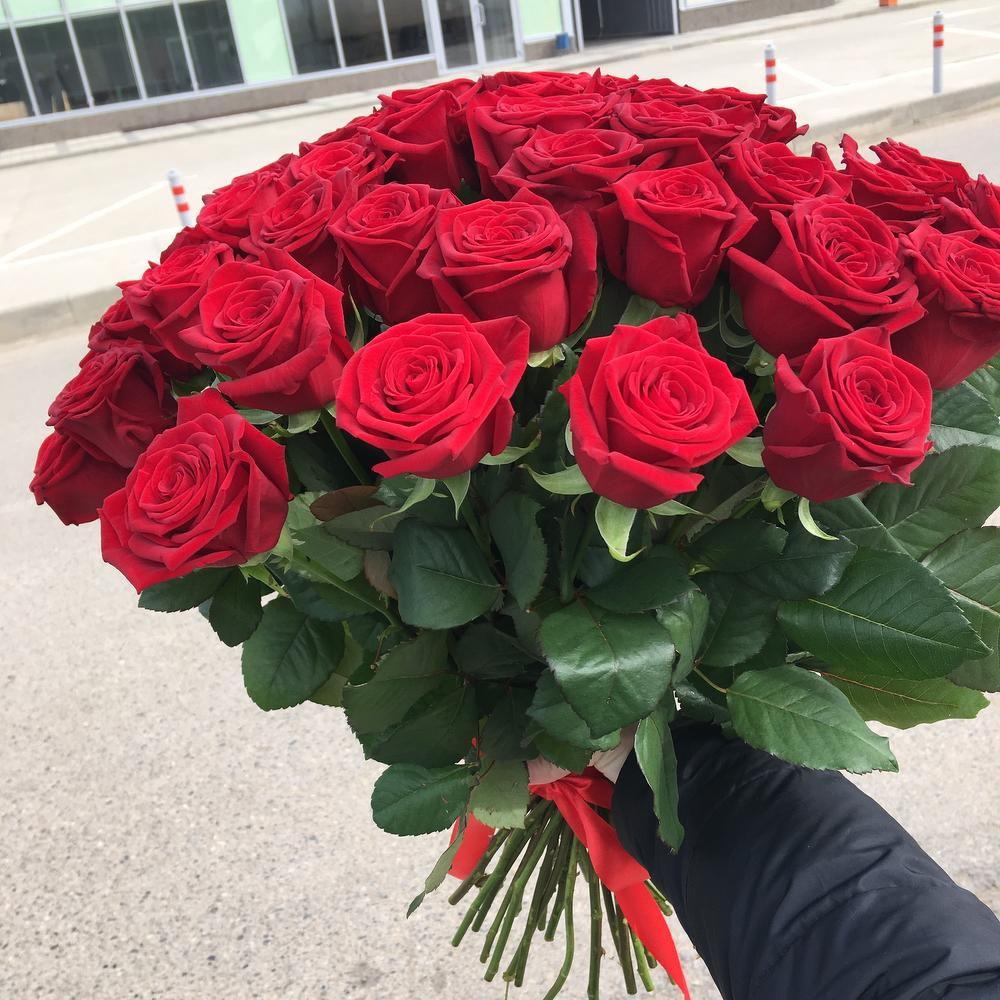 отличные ред наоми роза фото наклеить фотопанно